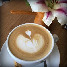 کافه رستوران تانیا
